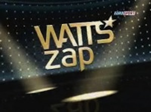 Best of 2010: WATTS zap
